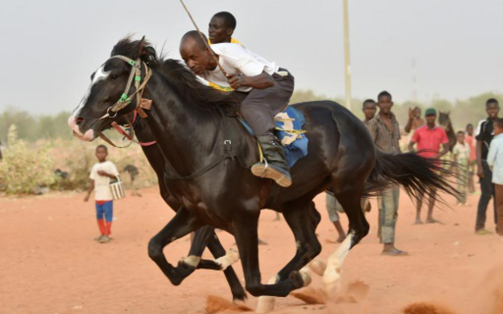 niger course chevaux2